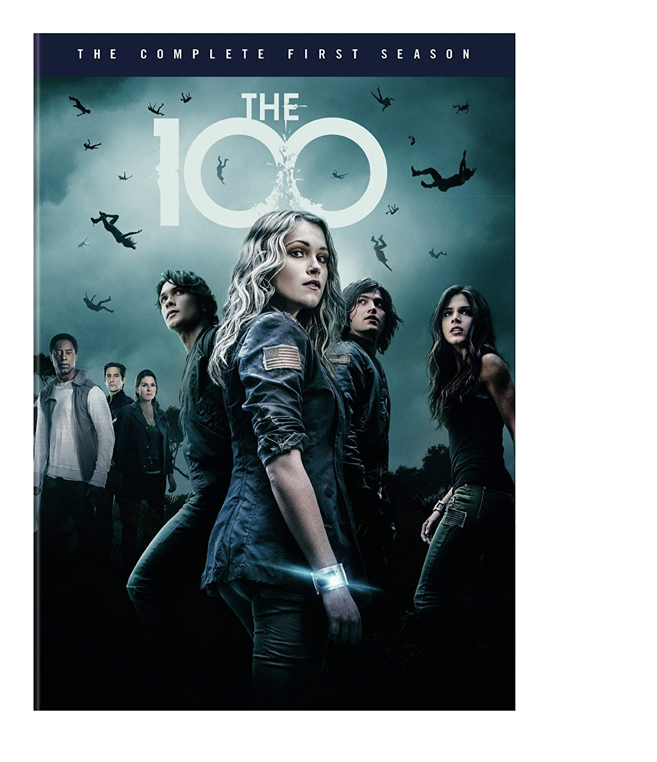 Tv Show cover: The 100