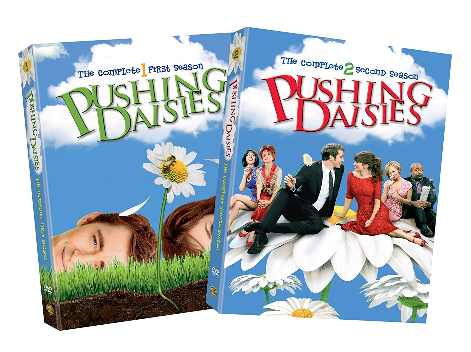 Tv Show cover: Pushing Daisies
